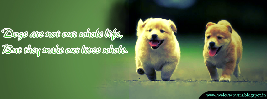 Dogs Are Not Our Whole Life Timeline Cover