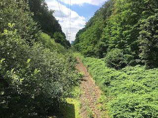 Blick über stillgelegte Gleise in Richtung Gasometer