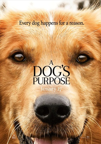 A Dogs Purpose 2017 English 720p WEB-DL 800MB ESubs
