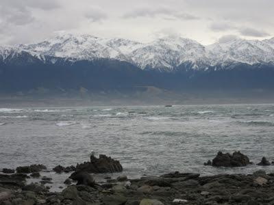 Kaikoura. Nueva Zelanda