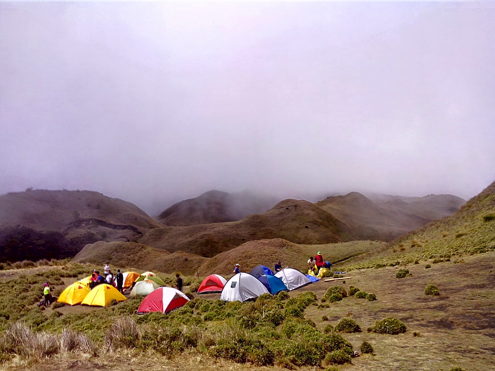 Mt. Pulag Camp 3 - Grasslands