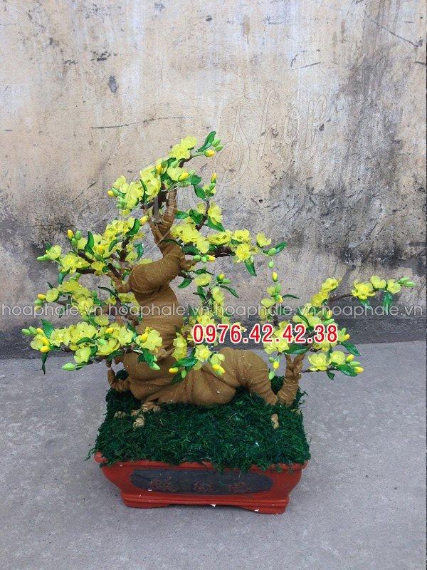 Goc bonsai mai dao the rong tai Dang Tien Dong