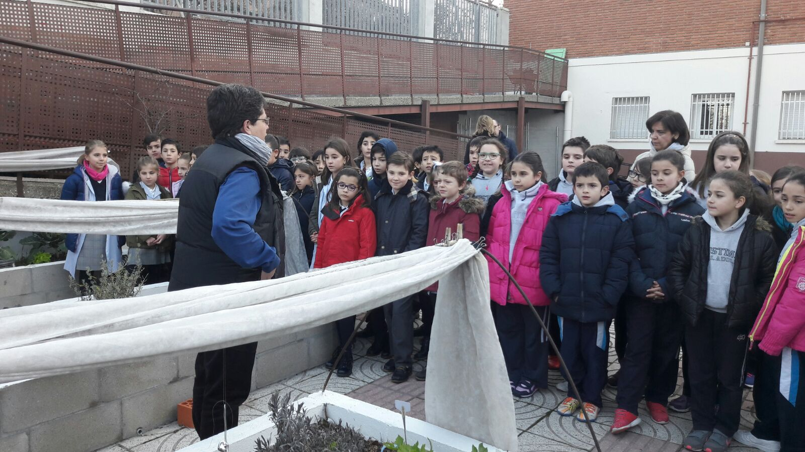 Agustinas Valladolid - Primaria 4 - Huertagus 3