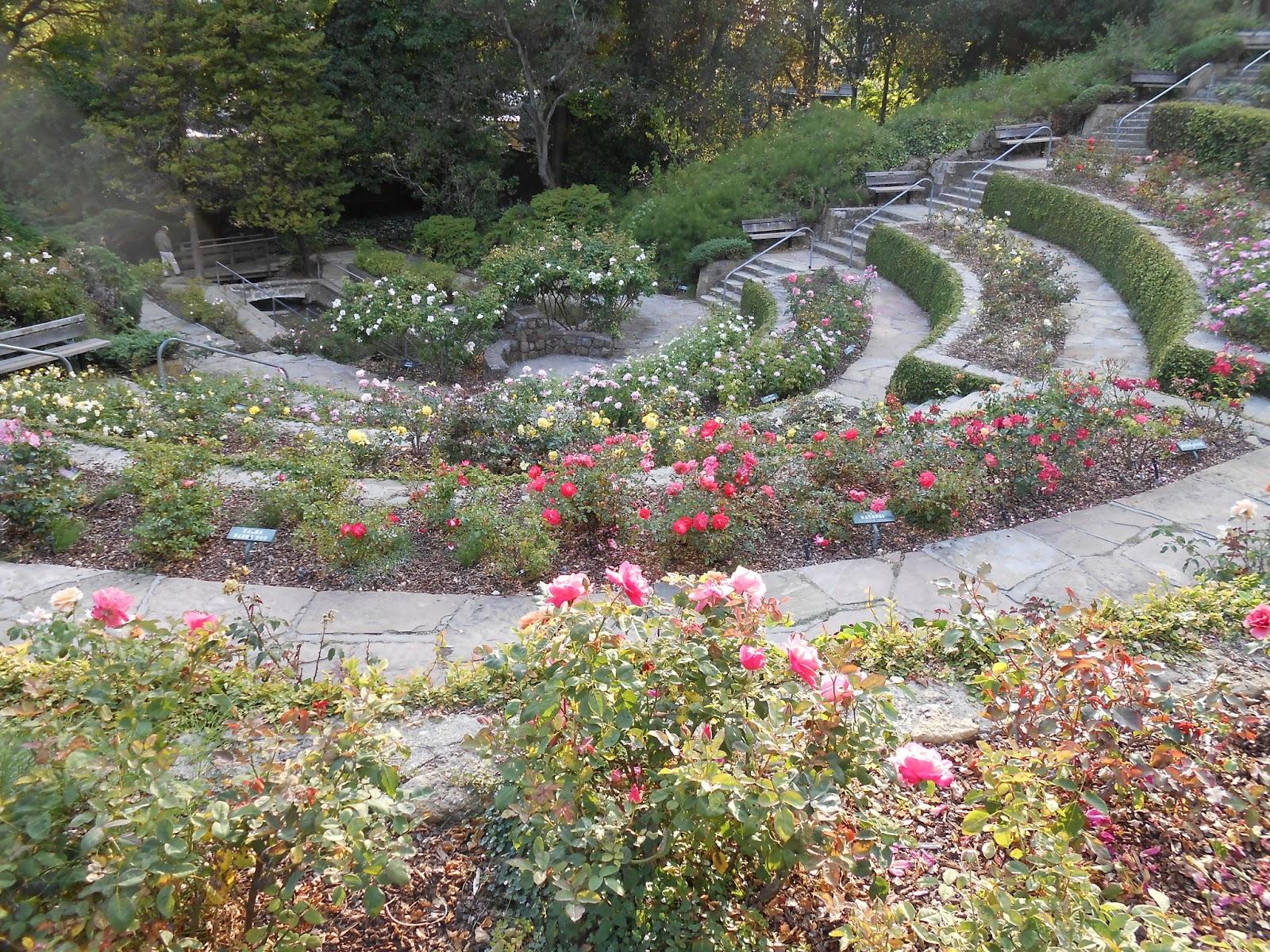 berkeley rose garden spirituality talk - Berkeley Rose Garden
