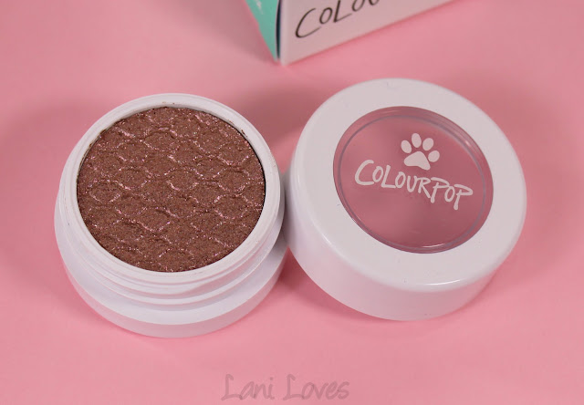 ColourPop Super Shock Shadow - Cat Nap Swatches & Review