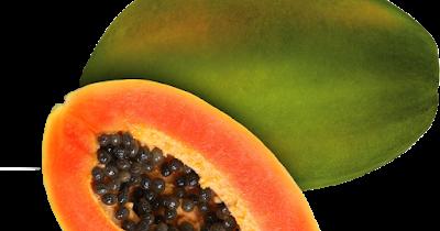 aldiansyah darmawan buah pepaya penurun darah tinggi buah pepaya penurun darah tinggi