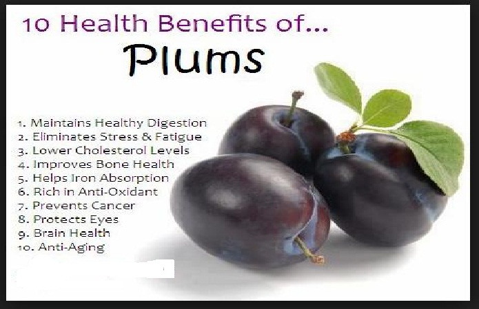 File:Plums Vitamin Body Medical Advantages product.svg