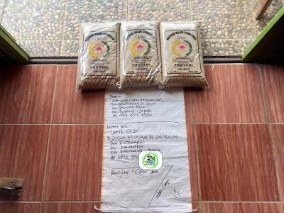 Benih Padi Pesanan    UMAR SAID Karawang, Jabar.    Benih Sebelum di Packing.