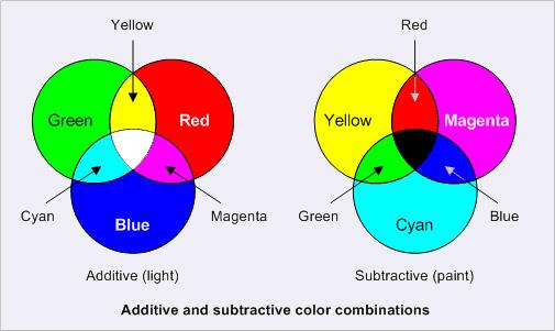 The Monkey Buddha Seed Of Life Color Wheel