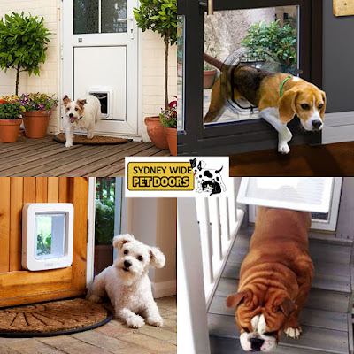 Sydney-Wide-Pet-Doors-doors-for-dogs-and-cats-for-Sydney-dog-lovers