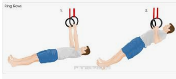 Pull up body rows