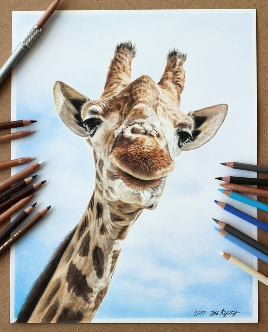 01-Giraffe-Jae-Kyung-Domestic-and-Wild-Animals-Pencil-Drawings-www-designstack-co