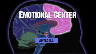 érzelem szabályozó központ