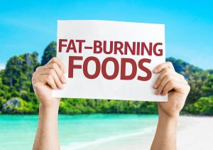 of food afford to burn fat 2017