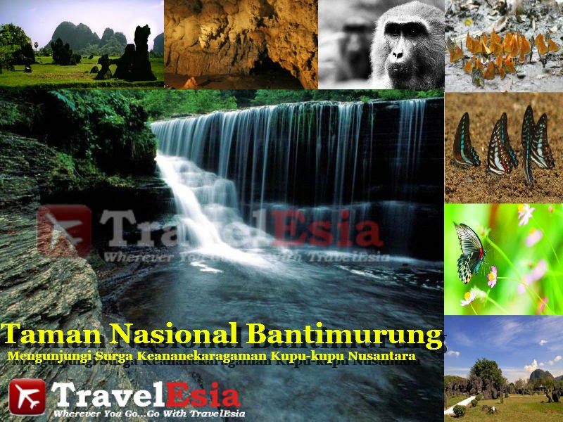 Taman Nasional Banti Murung