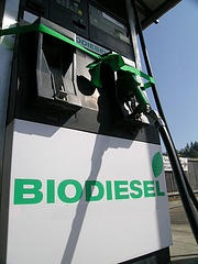 Biodiesel production improvement