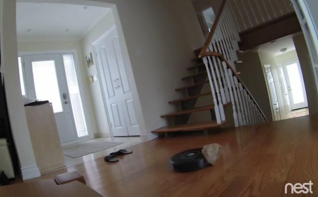 roomba aspirador gato robô skynet fail erro