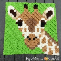 Giraffe C2C Square