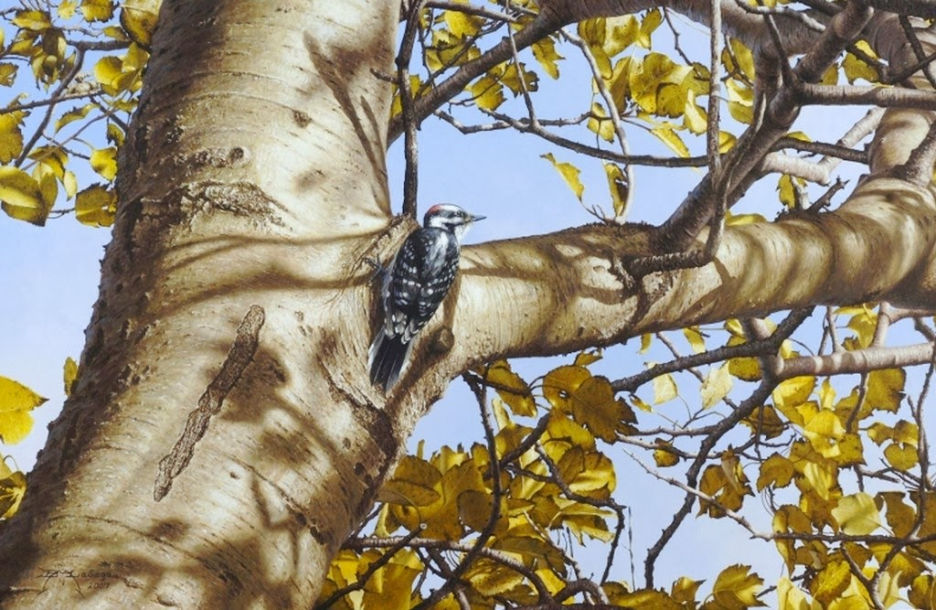 paisajes-naturales-con-aves-pinturas-en-acrilico