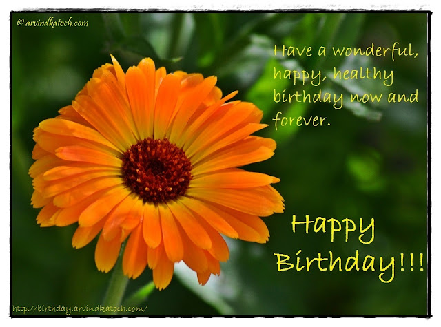 Beautiful, Yellow flower, Birthday Card, wonderful, happy, healthy birthday,