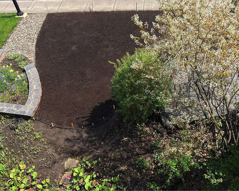 Aerial view of newly planted micro clover lawn