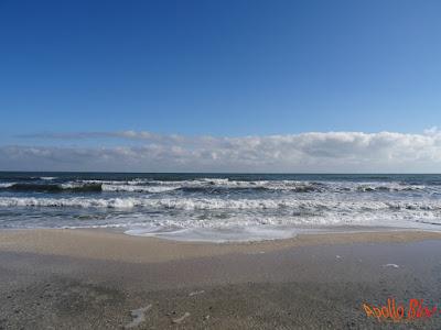 Marea Neagra