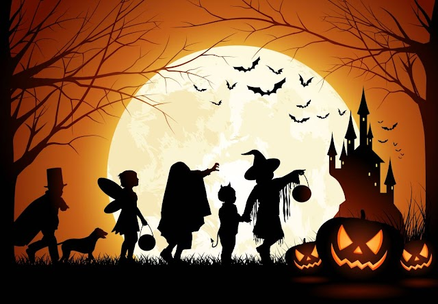 Everything you wanted to know about #Halloween.Today you can have a scary thought.