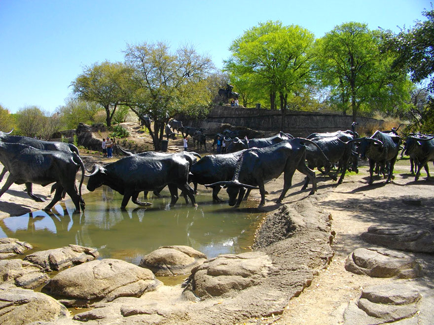 Cattle Drive,Dallas,Texas,USA