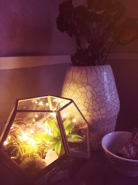 Diy Fairy Terrarium With Faux Plants Shivers Crickets