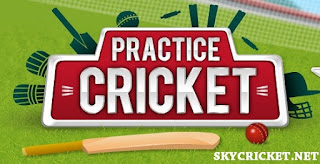 Play Practice Cricket Online Game