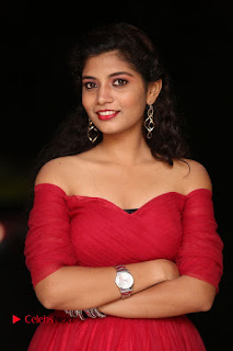 Actress Bindu Pictures in Red Dress at Attarillu Movie Press Meet 0008.JPG