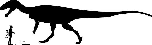 'Mega carnivore' dinosaur roamed southern Africa 200 million years ago
