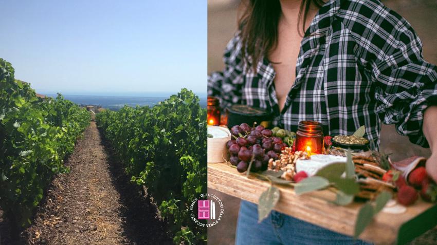 Toscana: degustazione, cantine, vigne