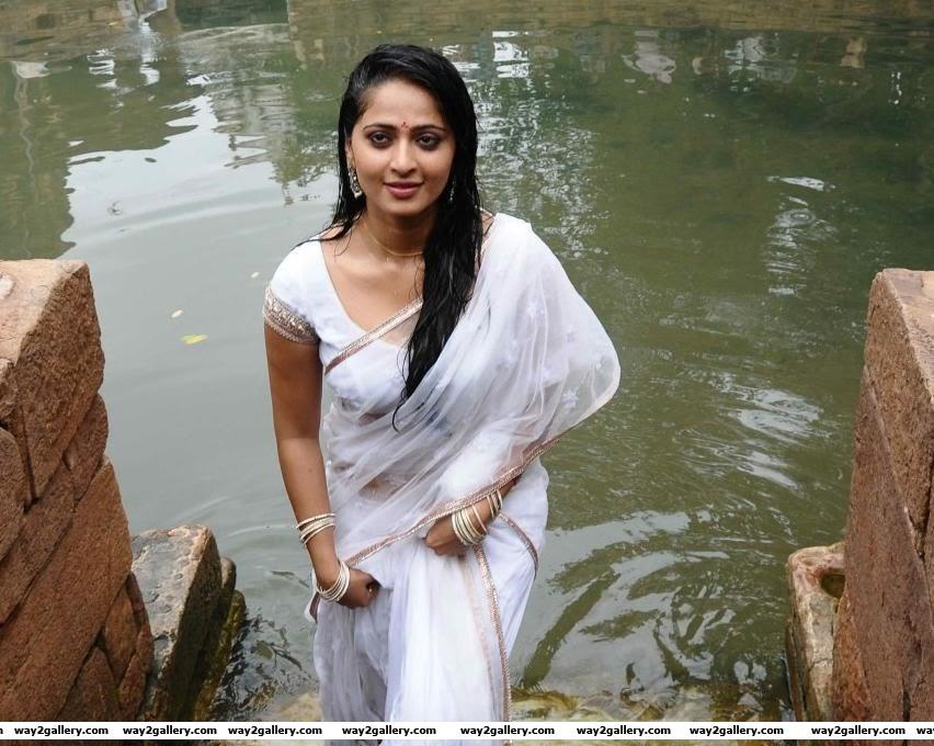 anushka  in saree  hot and sexy photo gallery
