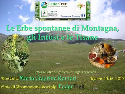 ©dierbainerba.blogspot.it – Maria Caterina Ranieri – all rights reserved