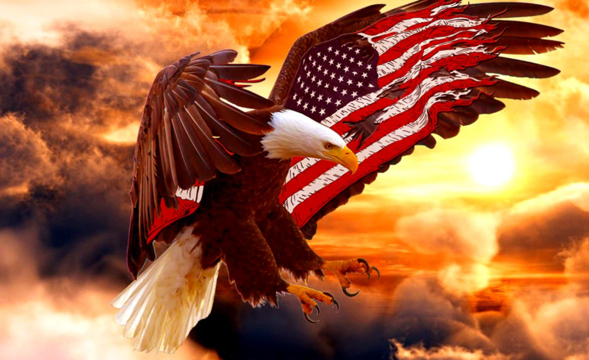 Bald Eagle Wallpaper Wallpapers Style