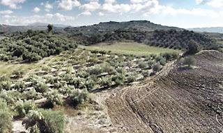 Ηγουμενίτσα:2η παράταση προθεσμίας υποβολής αντιρρήσεων κατά του αναρτημένου δασικού χάρτη