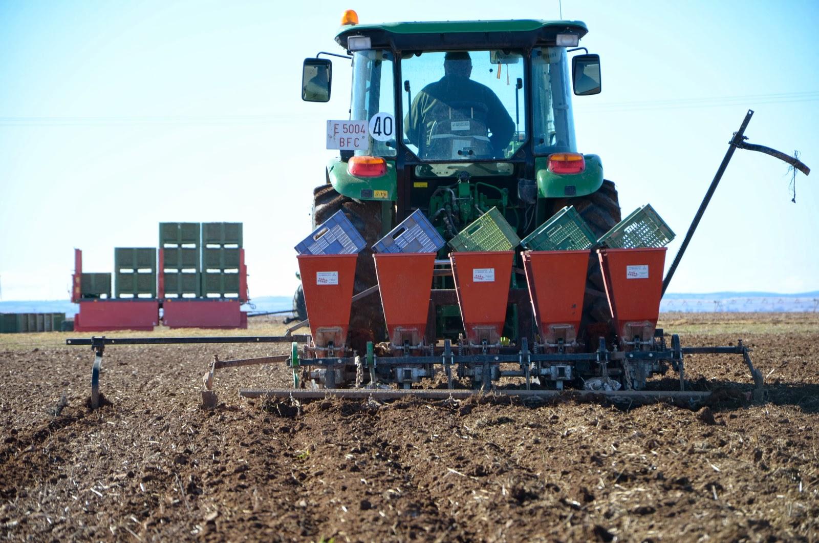 Garlic Mechanical Planter