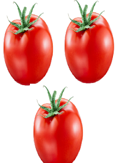 Tomato meaning in tamil, telugu, marathi, kannada, malayalam, in hindi name, gujarati, in marathi, indian name, tamil, english, other names called as, translation