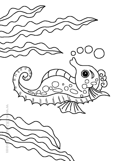 Sea Horse And Sea Weeds Coloring Book