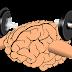 Alimentos que fortalecen el cerebro y sus funciones