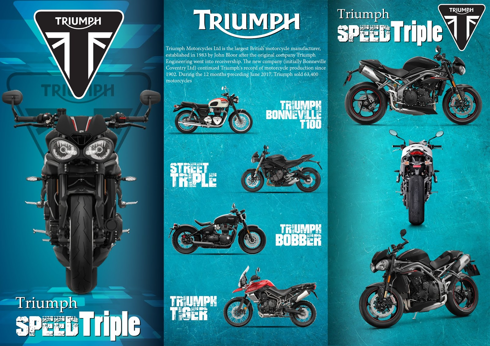 Barnik Art Triumph Speed Triple Brochure