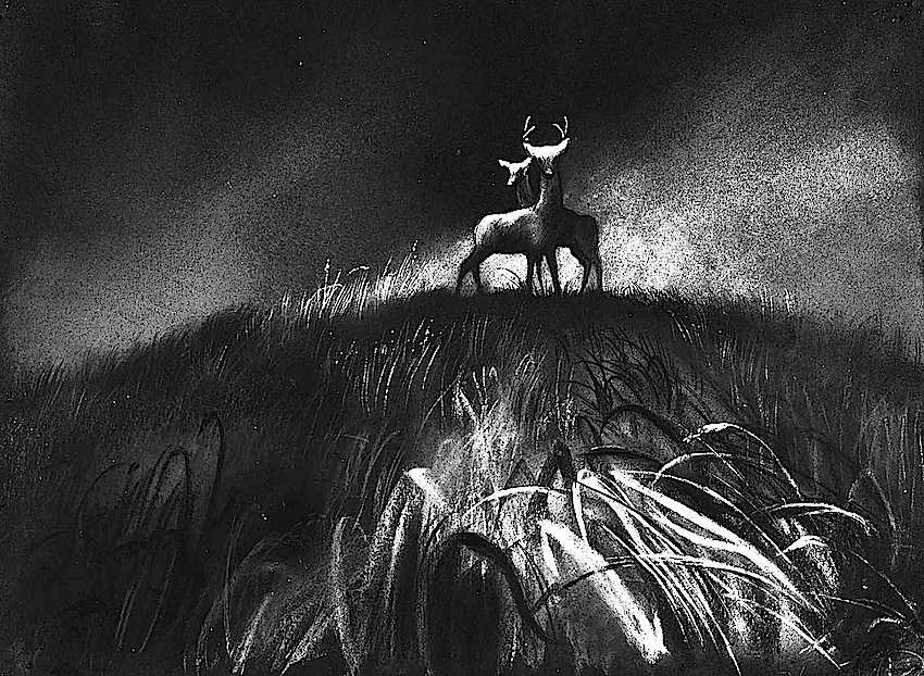 A study of wildfire for Disney's Bambi