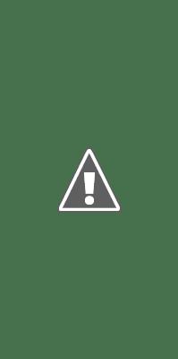 Maintenant, il sera encore plus facile de suivre vos centres d'intérêt, parce que Discover est à venir sur Google.com sur tous les navigateurs mobiles.