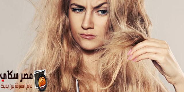 أهمية تدليك فروة الرأس وعلاقتها بجميع أنواع الشعر Scalp massage