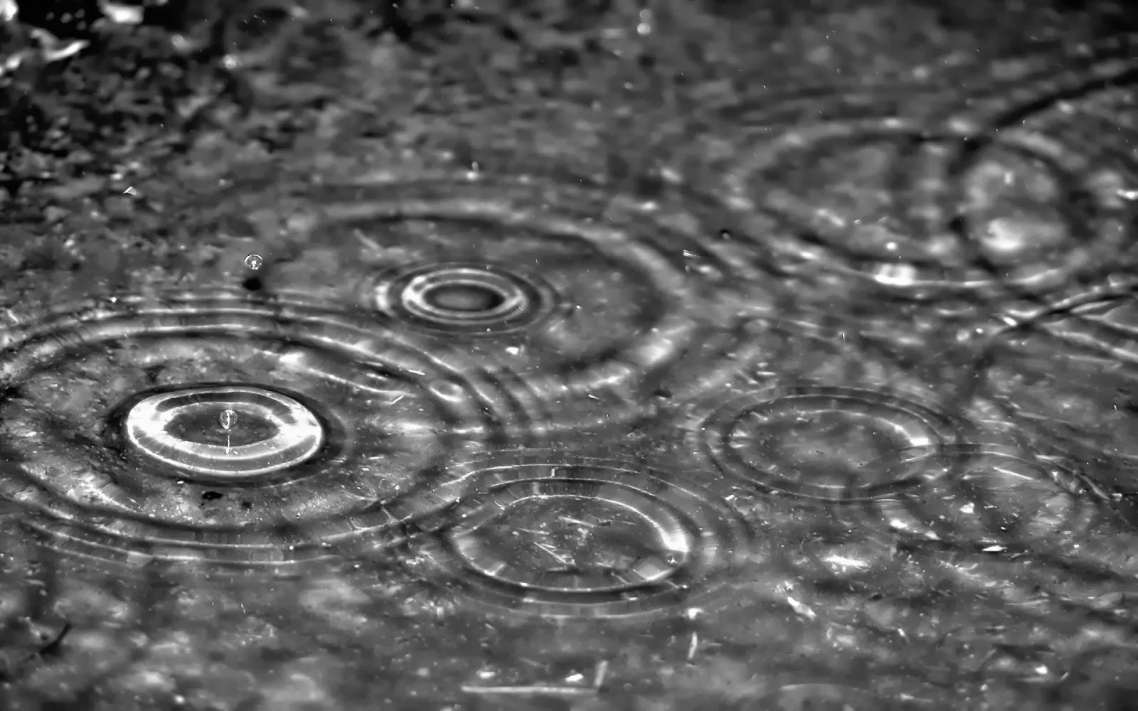 ảnh mưa bong bóng