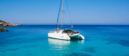Escursione in catamarano verso l'isola dell'Asinara
