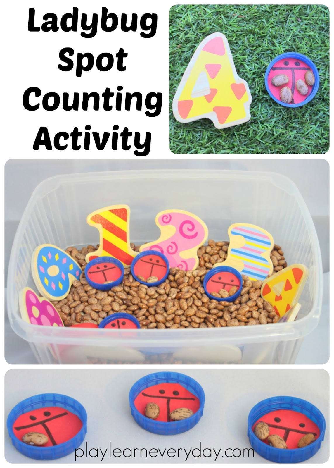 Ladybug Spot Counting Activity
