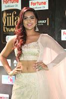 Prajna Actress in backless Cream Choli and transparent saree at IIFA Utsavam Awards 2017 0078.JPG