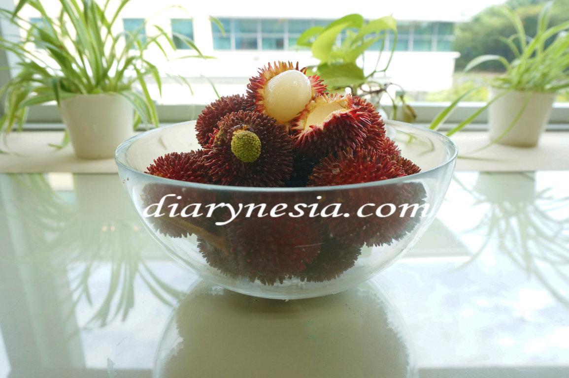 best time to eat rambutan, description of rambutan, rambutan information, diarynesia